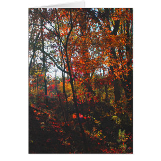 Missouri Hills Greeting Cards