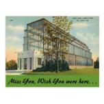 Missouri, Jewel Box, Forest Park Postcard