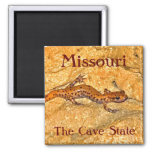 Missouri Magnets