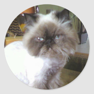 Missy the Himalayan Classic Round Sticker