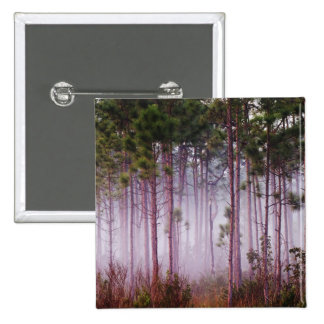 Mist among pine trees at sunrise, Everglades Button