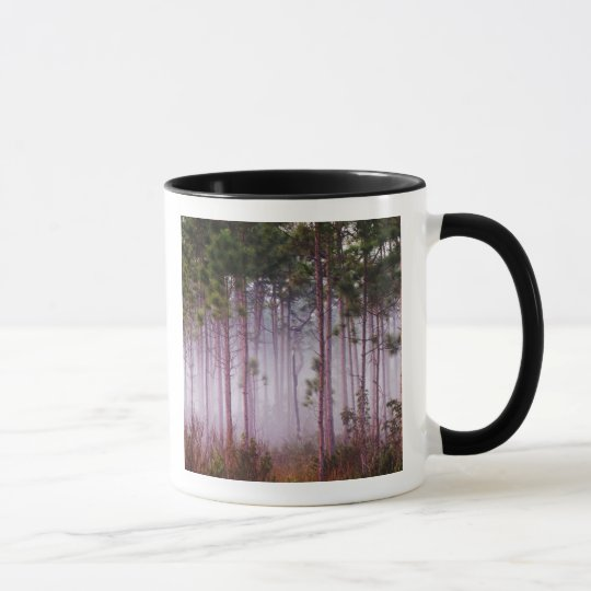Mist among pine trees at sunrise, Everglades Mug