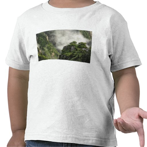 Mist among the peaks and valleys of Grand Canyon Tee Shirt