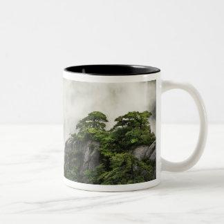 Mist among the peaks and valleys of Grand Canyon Two-Tone Coffee Mug