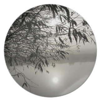Mist and Shadow Plate