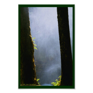 Mist at Silver Falls Poster