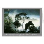 Mist Enshrouds Amazon Rainforest Cards