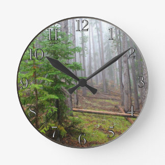 Mist in pine tree forest round wallclocks