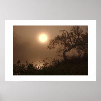 Mist Rise Print