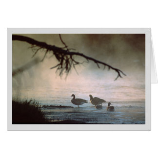 Mist Rises Over the Madison River Card
