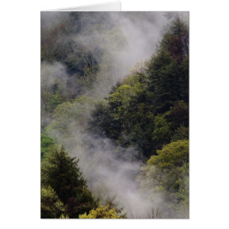 Mist rising from mountainside after spring rain, card