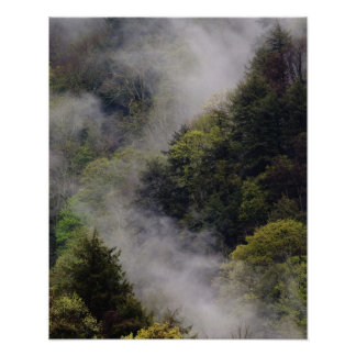 Mist rising from mountainside after spring rain, poster