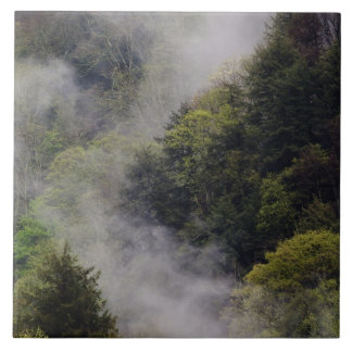 Mist rising from mountainside after spring rain, tile