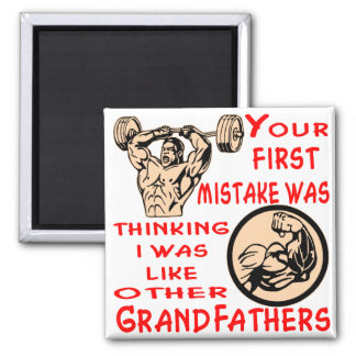 Mistake Was Thinking I Was Like Other Grandfathers Magnet