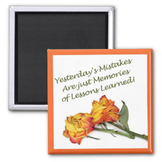 Mistakes and Lessons Magnet