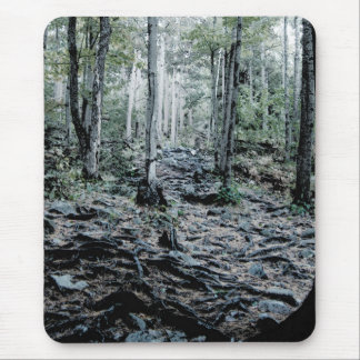 Misted Birch Forest Mouse Pad