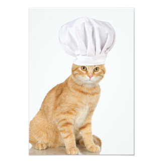 Mister Cat Chef To You 5x7 Paper Invitation Card