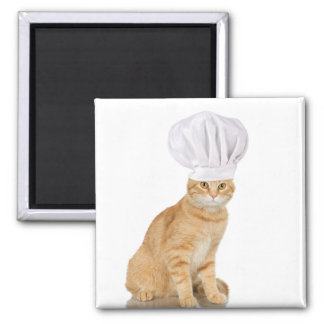 Mister Cat Chef To You 2 Inch Square Magnet