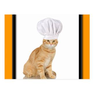 Mister Cat Chef To You Postcard