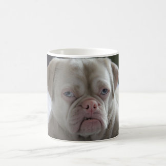 Mister Cornelius grumpy Monday Coffee Mug