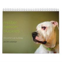 Mister Nelson Buckles : The American Bulldog Calendar