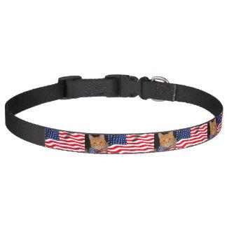 Mister President's Super Patriotic Excellent Pet Collar