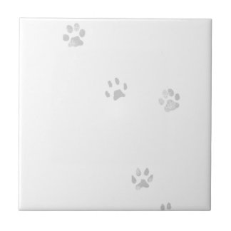 MIstery of cat's path Tile