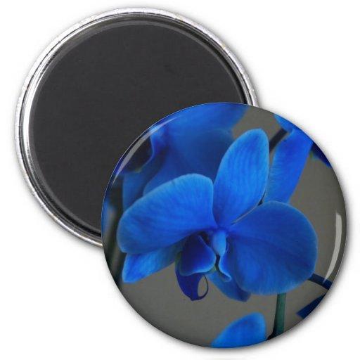 Mística azul imanes para frigoríficos
