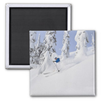 Mistie Fortin skis powder Magnet