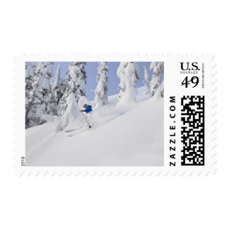 Mistie Fortin skis powder Postage