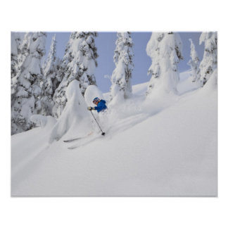 Mistie Fortin skis powder Poster