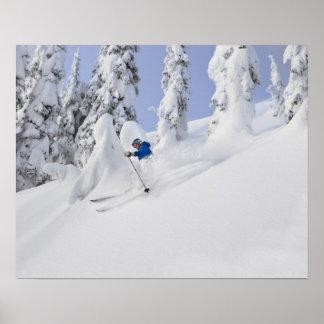 Mistie Fortin skis powder Posters