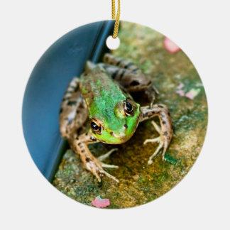 Mistletoad - round ceramic frog Christmas ornament