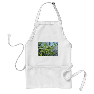 Mistletoe Adult Apron