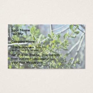 Mistletoe Business Card