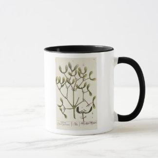 Mistletoe from 'A Curious Herbal', 1782 Mug