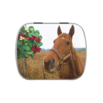Mistletoe Horse Jelly Belly Candy Tin