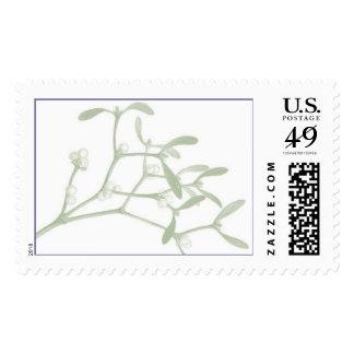 Mistletoe Postage Stamp