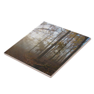 Misty Autumn Morning in the Forest #2 Ceramic Tile