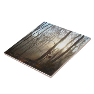 Misty Autumn Morning in the Forest #3 Ceramic Tile