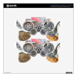 Misty Blue PS3 Controller Decals