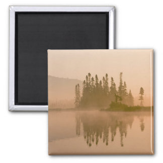 Misty dawn on East Inlet, Pittsburg, New Fridge Magnet