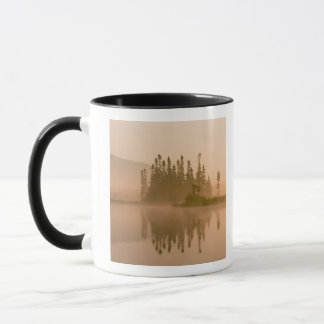 Misty dawn on East Inlet, Pittsburg, New Mug