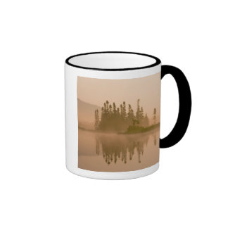 Misty dawn on East Inlet, Pittsburg, New Mugs