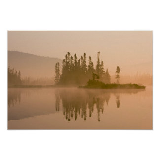 Misty dawn on East Inlet, Pittsburg, New Poster
