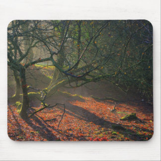 Misty Dried Out Pond Mouse Pad