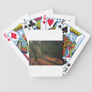 Misty Dried Out Pond Bicycle Poker Cards