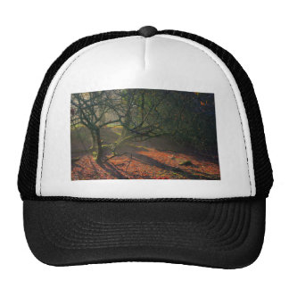 Misty Dried Out Pond Trucker Hat