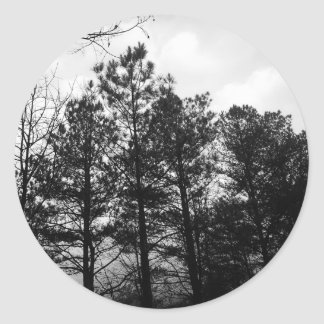 Misty Ethereal  Haunted Trees Forest Woods Fog Classic Round Sticker