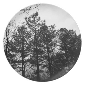 Misty Ethereal  Haunted Trees Forest Woods Fog Dinner Plate